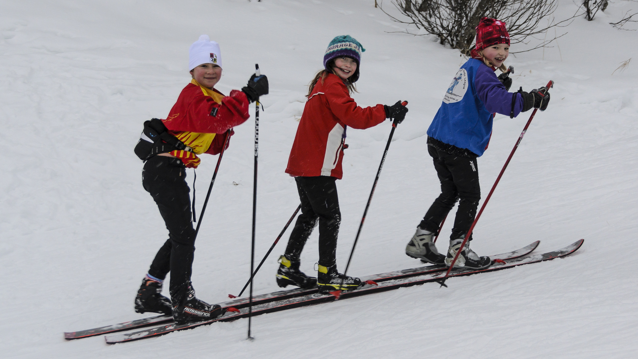 Image result for nordic junior