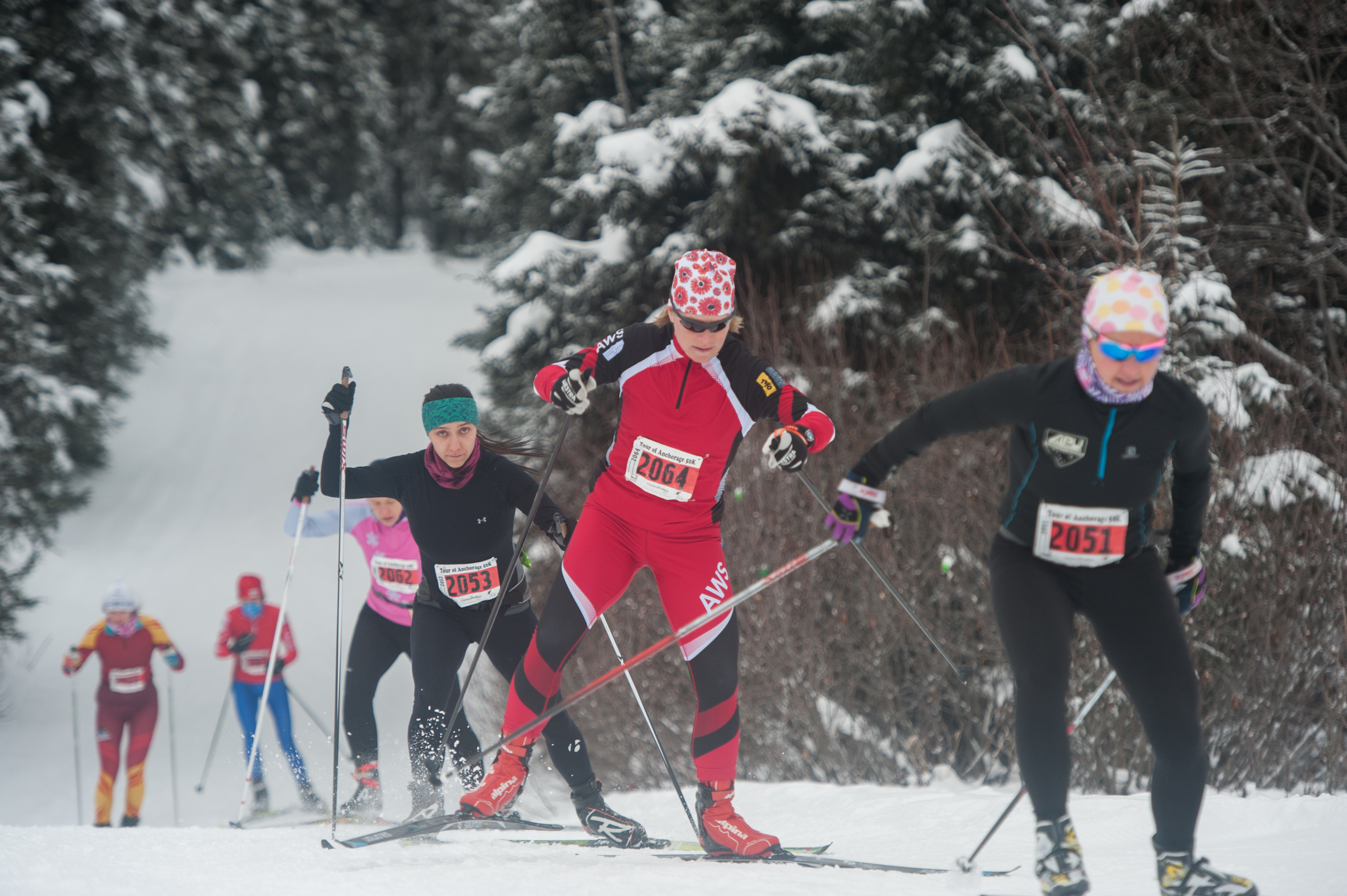 Tour Of Anchorage Results Posted Thank You To All Our Skiers Bikers Volunteers Nordic Skiing Association Of Anchorage